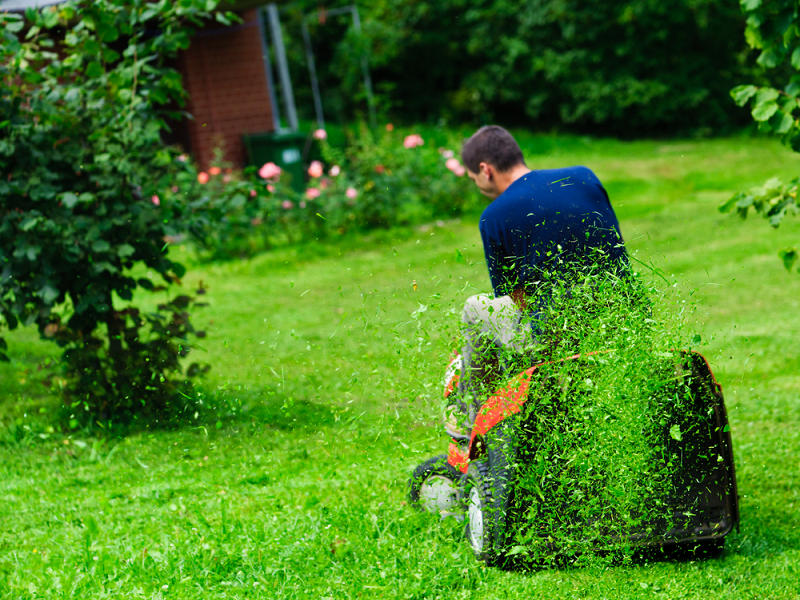 Is Your Lawn Ready for Spring?